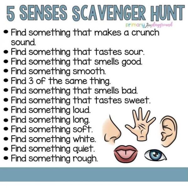 5-senses-scavenger-hunt