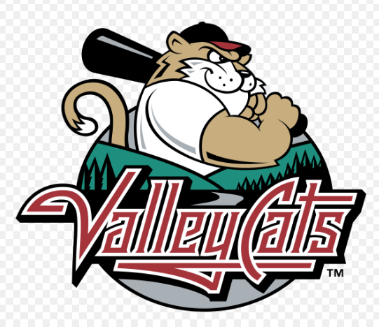 Valleycats Logo